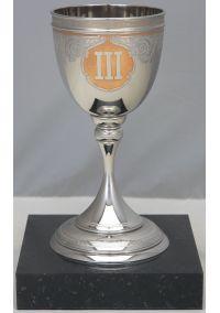 Кубок украшенный за 3 место IFC